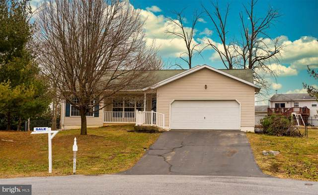16901 Hampshire Drive, WILLIAMSPORT, MD 21795 (#MDWA176558) :: Crossroad Group of Long & Foster