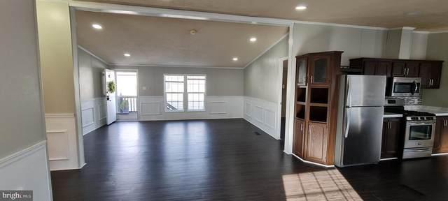 241 Edward Lane, LOTHIAN, MD 20711 (#MDAA454342) :: Dart Homes