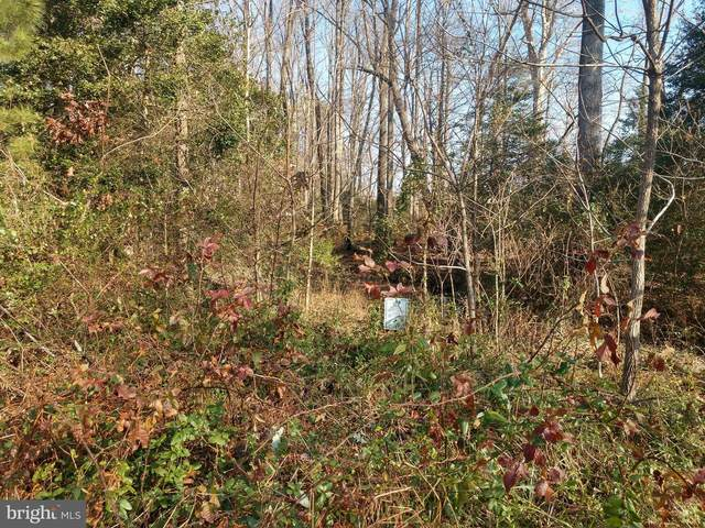 Lot 45 Hickory Cove Road, HURLOCK, MD 21643 (#MDDO126534) :: EXIT Realty Enterprises