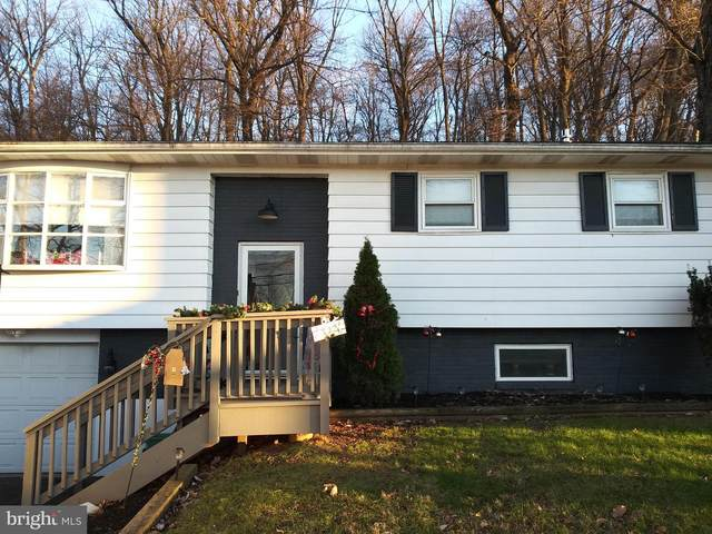 40 E Station Avenue, COOPERSBURG, PA 18036 (#PALH115696) :: LoCoMusings