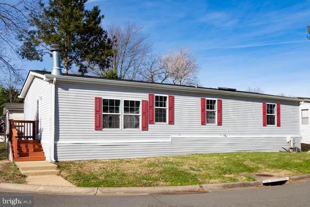 14500 Lake Central Drive, CHANTILLY, VA 20151 (#VAFX1171648) :: Pearson Smith Realty