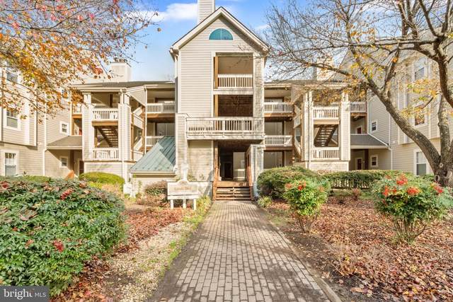 1203 Back Creek Loop, SOLOMONS, MD 20688 (#MDCA180228) :: The Piano Home Group