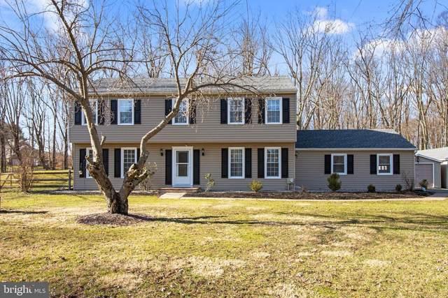 6486 Deerfield Drive, NEW HOPE, PA 18938 (#PABU517406) :: Jason Freeby Group at Keller Williams Real Estate