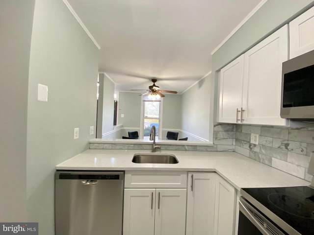 13846 Carter House Way 14-96, SILVER SPRING, MD 20904 (#MDMC738728) :: SP Home Team