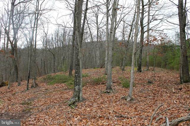 Lot #10 Staubwoods Drive, ROMNEY, WV 26757 (#WVHS115150) :: Bruce & Tanya and Associates