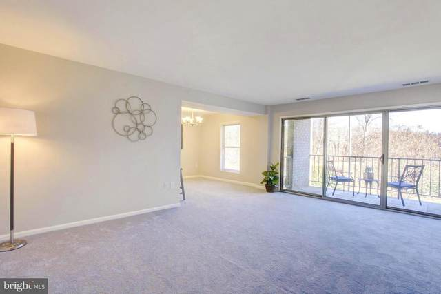 39 Canterbury Square #201, ALEXANDRIA, VA 22304 (#VAAX254724) :: Fairfax Realty of Tysons