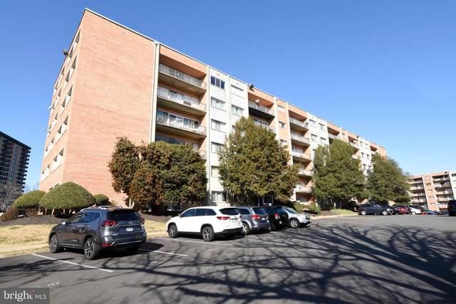 5831 Quantrell Avenue #106, ALEXANDRIA, VA 22312 (#VAAX254808) :: Jacobs & Co. Real Estate