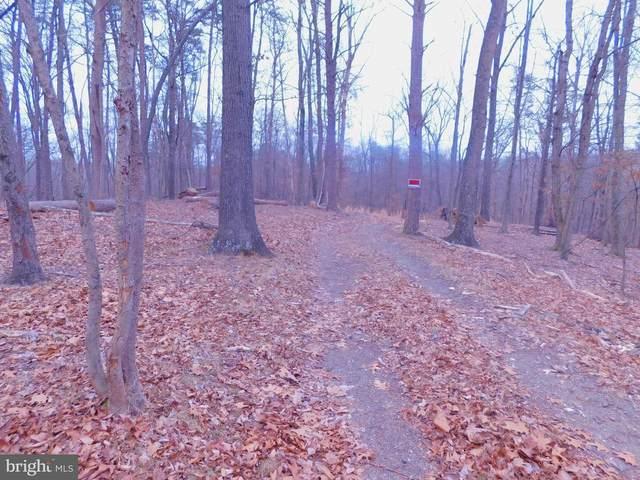 175 Sherando Trail, HEDGESVILLE, WV 25427 (#WVBE183026) :: AJ Team Realty