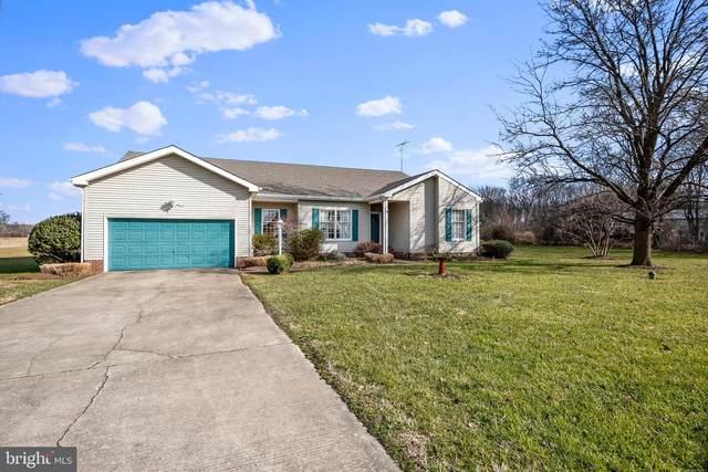 10269 John Carvill Road, CHESTERTOWN, MD 21620 (MLS #MDKE117552) :: Maryland Shore Living   Benson & Mangold Real Estate