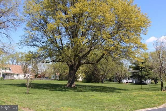 0 Windward Drive, TILGHMAN, MD 21671 (MLS #MDTA140152) :: Maryland Shore Living | Benson & Mangold Real Estate