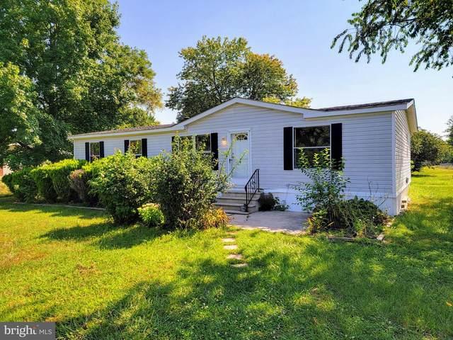 148 Elk Drive, FELTON, DE 19943 (MLS #DEKT245758) :: Kiliszek Real Estate Experts