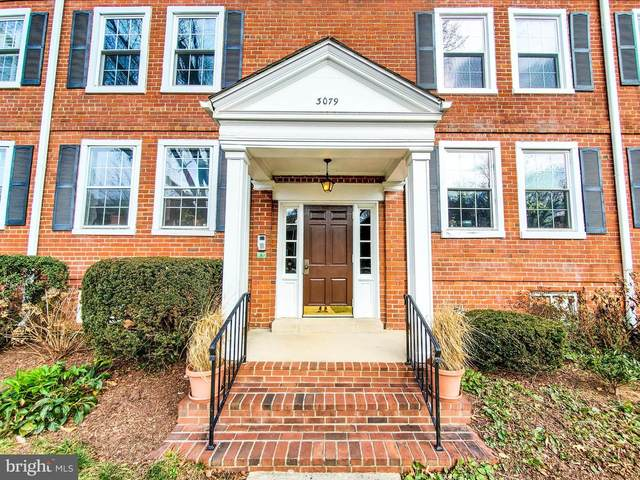 3079 S Buchanan Street B2, ARLINGTON, VA 22206 (#VAAR175180) :: Network Realty Group
