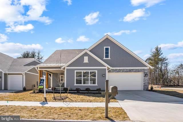 123 Foam Flower Drive, LAKE FREDERICK, VA 22630 (#VAFV161842) :: Berkshire Hathaway HomeServices McNelis Group Properties