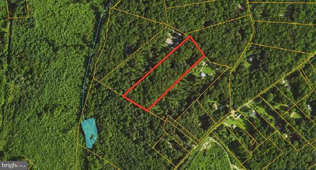 Lot 3 Oak Haven Lane, MINERAL, VA 23117 (#VALA122596) :: The MD Home Team