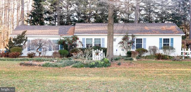 33500 Tuckahoe River Road, EASTON, MD 21601 (#MDTA140258) :: RE/MAX Coast and Country