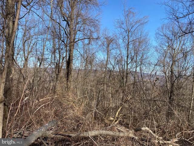 Lot 3 Old Orchard, LINDEN, VA 22642 (#VAWR142540) :: Mortensen Team