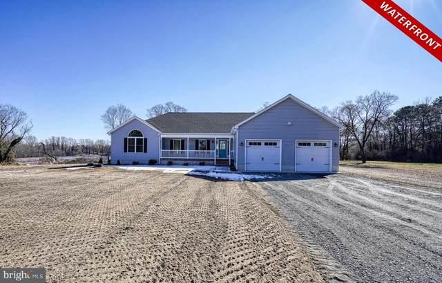10181 River Landing Road, DENTON, MD 21629 (MLS #MDCM125082) :: Maryland Shore Living   Benson & Mangold Real Estate