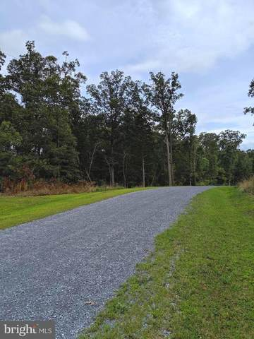 Lot 3 Oak Lane Estates, STEPHENS CITY, VA 22655 (#VAFV162086) :: The Mike Coleman Team