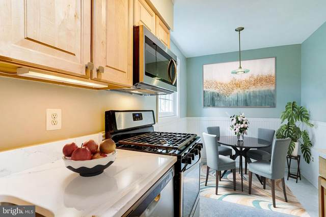 2051 N Woodstock Street #201, ARLINGTON, VA 22207 (#VAAR176170) :: Gail Nyman Group
