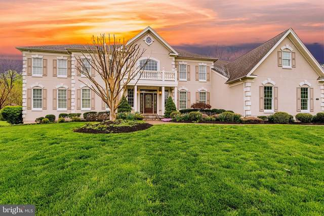 5804 Malvern Hill Court, HAYMARKET, VA 20169 (#VAPW514692) :: The Miller Team