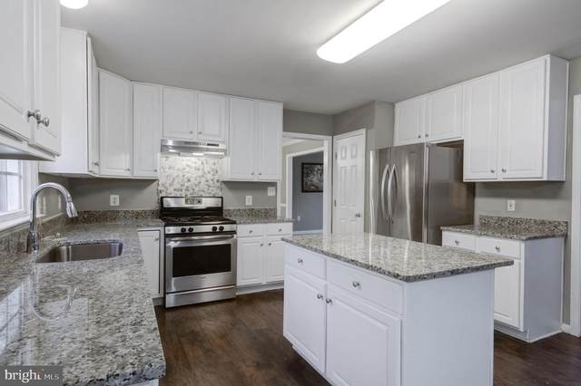 3206 Terra Springs Drive, FREDERICKSBURG, VA 22408 (#VASP228790) :: The Matt Lenza Real Estate Team