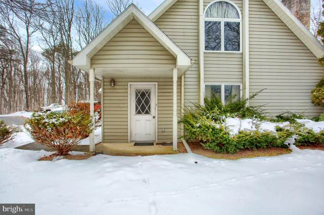 60 Allen Drive, SHERMANS DALE, PA 17090 (#PAPY103074) :: Linda Dale Real Estate Experts