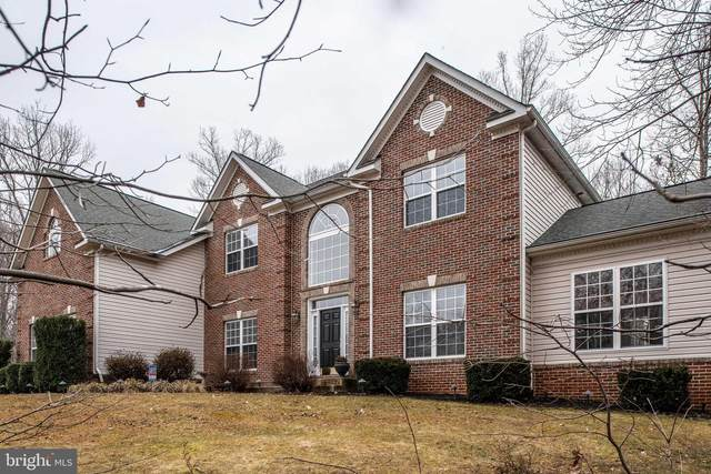 31 Mills Hollow Drive, FREDERICKSBURG, VA 22406 (#VAST229292) :: Tom & Cindy and Associates