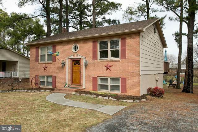 131 Buckingham Drive, STEPHENS CITY, VA 22655 (#VAFV162228) :: AJ Team Realty