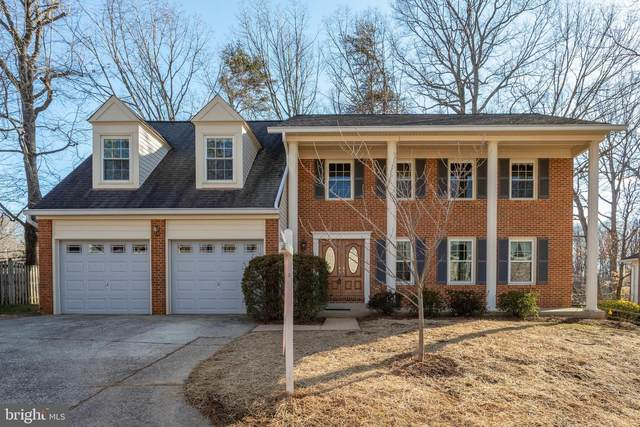 10128 Red Spruce Road, FAIRFAX, VA 22032 (#VAFX1181556) :: Coleman & Associates