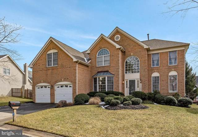 10502 Beechknoll Lane, POTOMAC, MD 20854 (#MDMC744968) :: AJ Team Realty