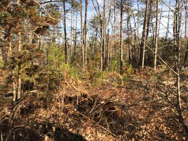 0 Springbranch Trail #48, STANARDSVILLE, VA 22973 (#584297) :: Bruce & Tanya and Associates