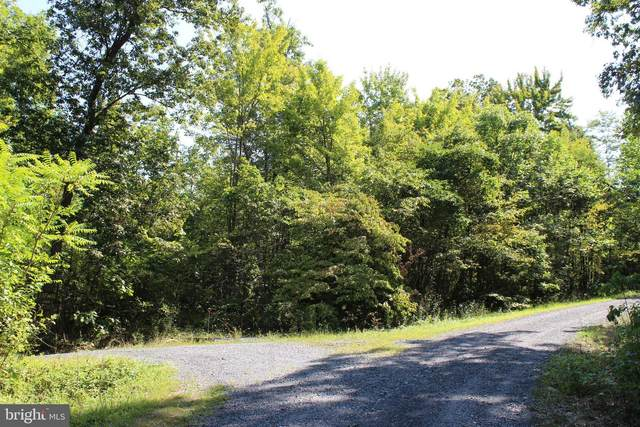 Brush Leaf Lane - Lot 8, MOUNT JACKSON, VA 22842 (#VASH121532) :: AJ Team Realty