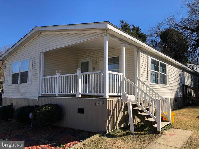 9509 Eugenia Park Street, CAPITOL HEIGHTS, MD 20743 (#MDPG597294) :: Dart Homes