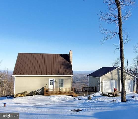 304 Bear Trail, WINCHESTER, VA 22602 (#VAFV162276) :: Pearson Smith Realty