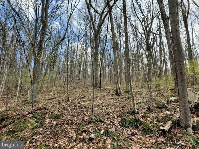Lot 14 Walnut Tree Road, FRONT ROYAL, VA 22630 (#VAWR142732) :: AJ Team Realty