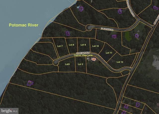 8 ON-THE-WATER LOTS Osprey View Lane, STAFFORD, VA 22554 (#VAST229434) :: The Maryland Group of Long & Foster Real Estate
