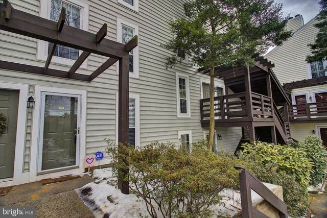 10196 Oakton Terrace Road, OAKTON, VA 22124 (#VAFX1182612) :: Yesford & Associates