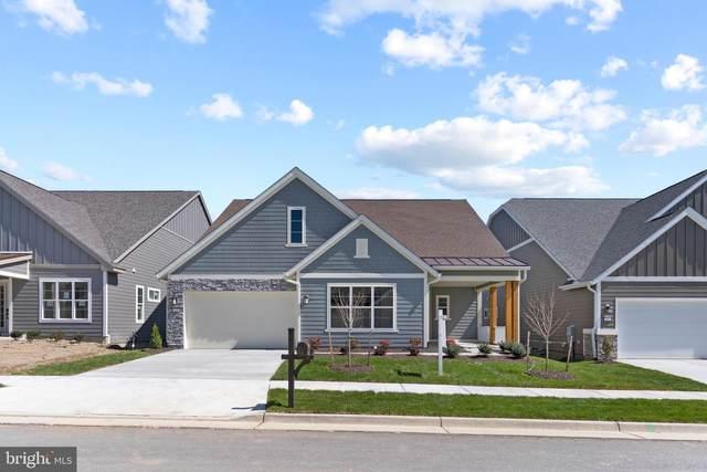 115 Pintail Way, LAKE FREDERICK, VA 22630 (#VAFV162334) :: Jim Bass Group of Real Estate Teams, LLC
