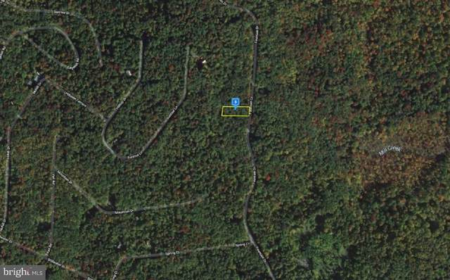 Lot 91 Fountain Drive, NEWFOUNDLAND, PA 18445 (#PAWN100278) :: Give Back Team