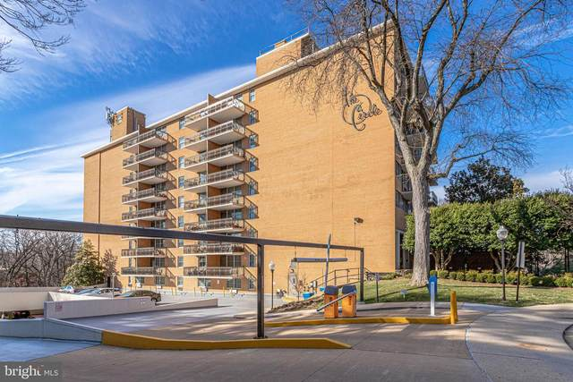2030 N Adams Street #404, ARLINGTON, VA 22201 (#VAAR177194) :: Debbie Dogrul Associates - Long and Foster Real Estate