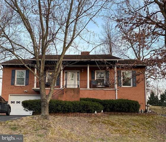 100 Oak Ridge, STEPHENS CITY, VA 22655 (#VAFV162448) :: Debbie Dogrul Associates - Long and Foster Real Estate