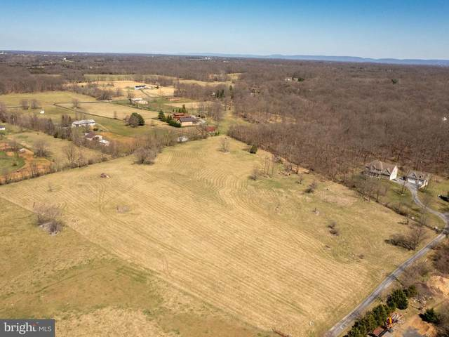 Crums Church Road, BERRYVILLE, VA 22611 (#VACL112184) :: The Mike Coleman Team