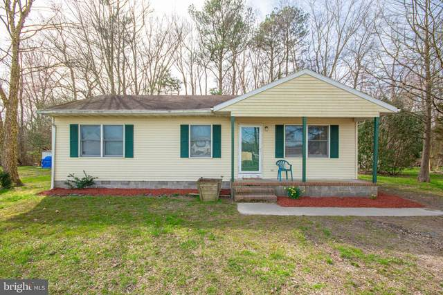11908 Drexwood Drive, PRINCESS ANNE, MD 21853 (#MDSO104558) :: Bright Home Group