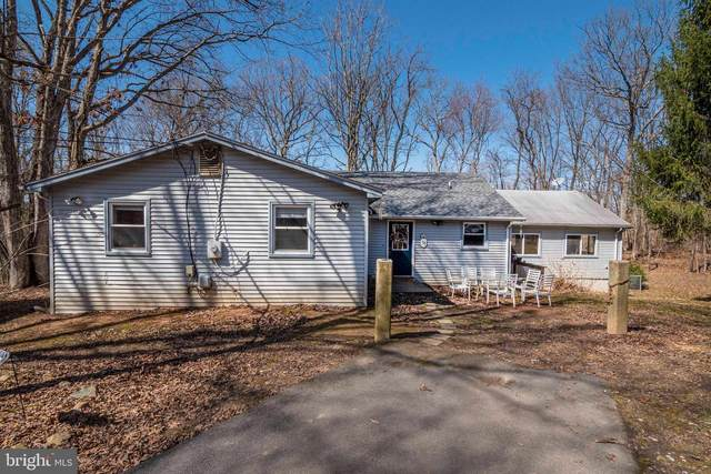 102 Bens Court, FRONT ROYAL, VA 22630 (#VAWR143008) :: Shawn Little Team of Garceau Realty