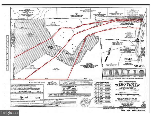 Bumpy Oak Road, LA PLATA, MD 20646 (#MDCH222816) :: EXIT Realty Enterprises
