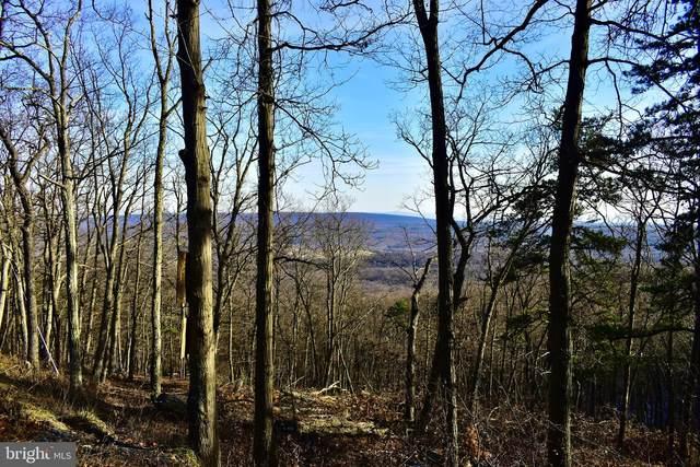 118,119 Tomahawk Tra Tomahawk Trail, WINCHESTER, VA 22602 (#VAFV162860) :: Jim Bass Group of Real Estate Teams, LLC
