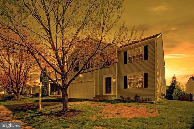 676 Holly Crest, CULPEPER, VA 22701 (#VACU144026) :: Realty One Group Performance