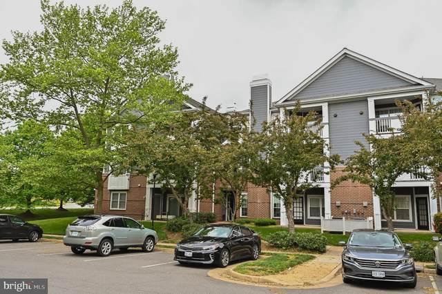 20303 Beechwood Terrace #303, ASHBURN, VA 20147 (#VALO434096) :: Corner House Realty