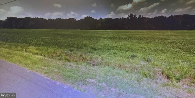Brittingham Road, DELMAR, DE 19940 (#DESU179938) :: Bright Home Group