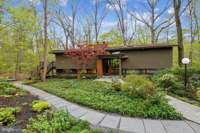 7107 Woodland Drive, SPRINGFIELD, VA 22151 (#VAFX1189562) :: Debbie Dogrul Associates - Long and Foster Real Estate